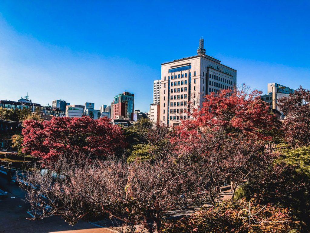 Trong trung tâm Seoul ngập tràn khung cảnh thơ mộng