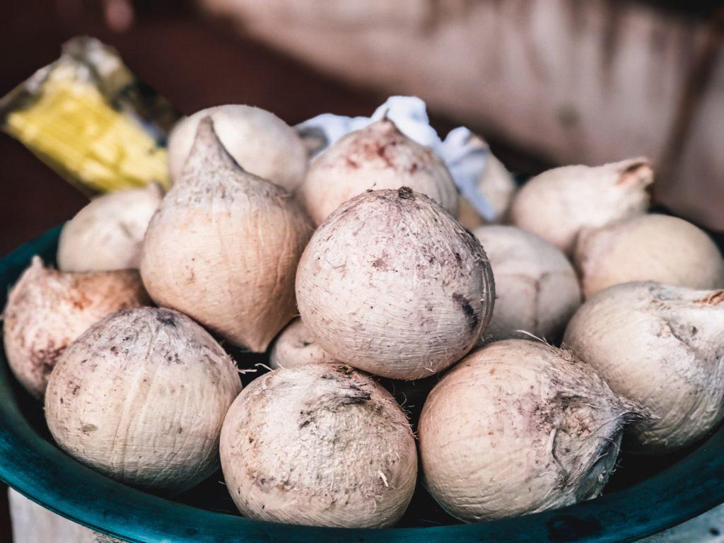 Dừa Dứa Lào